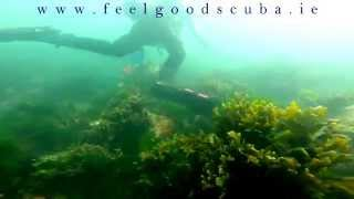 preview picture of video 'Scuba Diving in Ireland - Diving with Seals'