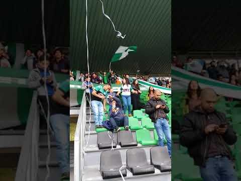 """""""los del sur deportes puerto montt contra loros"""" Barra: Los del Sur • Club: Deportes Puerto Montt"""