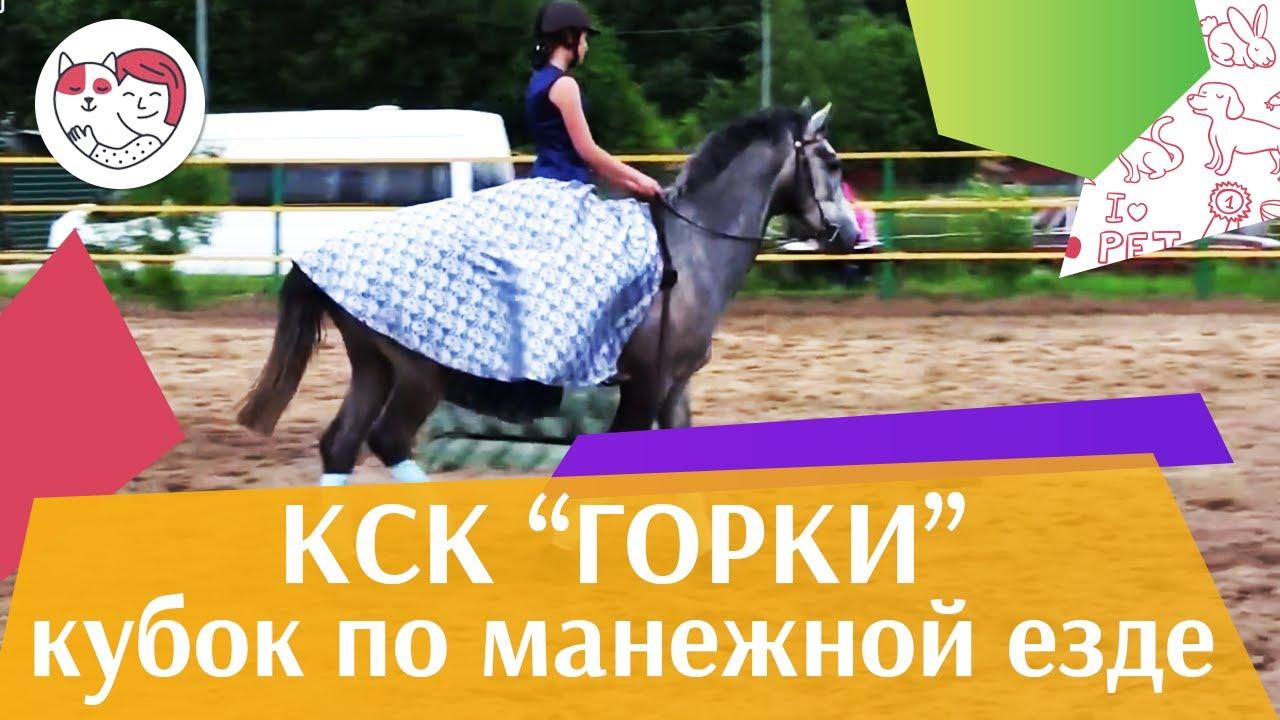 Летний кубок КСК Горки по манежной езде КЮР часть 32 на ilikepet