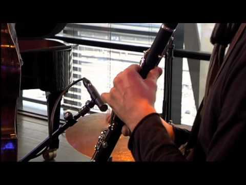 Wolfert Brederode Quartet - Meander online metal music video by WOLFERT BREDERODE