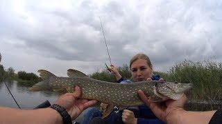 Взял Жену на рыбалку и попал на Отличный клев! Ловля щуки летом на спиннинг.