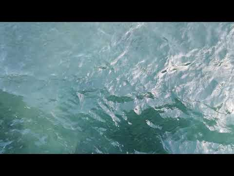 School of Fish – Oahu Hawaii – Paradise Captures – DJI_0886