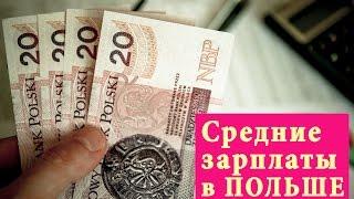 Сколько на самом деле зарабатывают поляки? Cредняя зарплата в Польше
