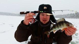 Зимняя рыбалка в тайге на окуня