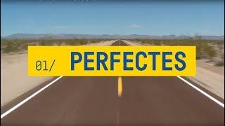 Els Catarres - Perfectes (Lyrics)