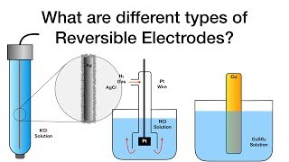 What are different types of Reversible Electrodes?   Electrochemistry   Physical Chemistry