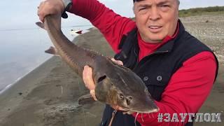 Газеты о рыбалке россия