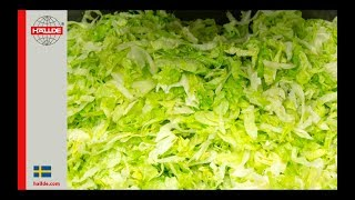 Lettuce: Slicer 5 mm