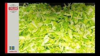 Lettuce: Slicer 5 mm