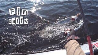 Рыбалка на озере лямт мурманской области