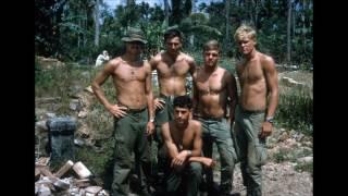 173rd Airborne Delta Co  2nd Batt   68 69