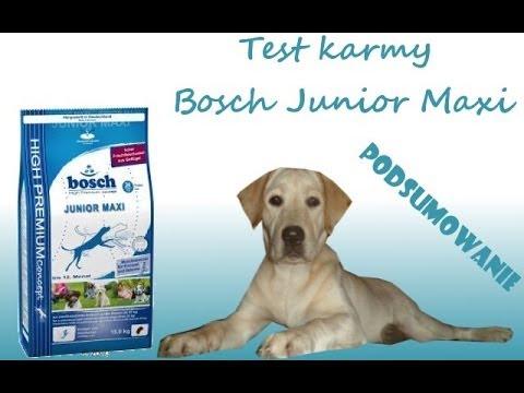 Test karmy Bosch Junior Maxi - podsumowanie