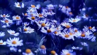 MAMMA  - Andrea Bocelli