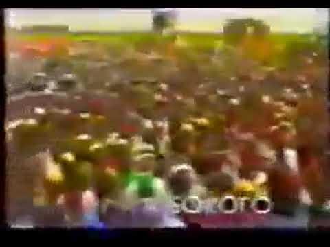 Borno State Today(6)