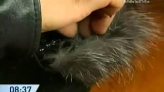 Украсить шапочку мехом и бусинками    shveyalux.ru