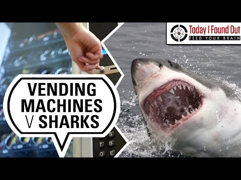 Are More People Really Killed by Vending Machines Than Sharks