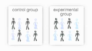 Research Methods - Control Group