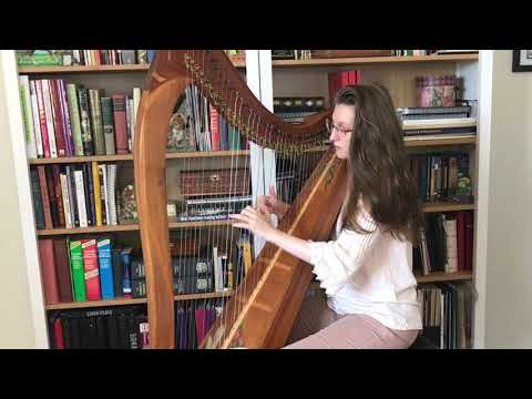 The Age to Come on Celtic Harp by Cynthia Artish