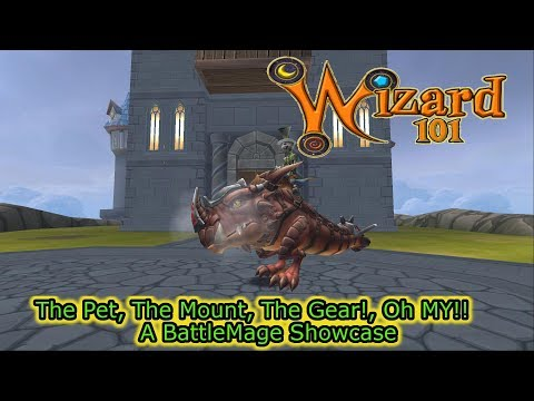 Wizard101 Life Pet