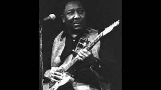 MUDDY WATERS / DUST MY BROOM