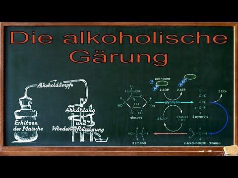 Der Alkoholismus auf den Vollmond