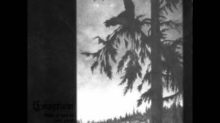 Empyrium - When Shadows Grow Longer '99