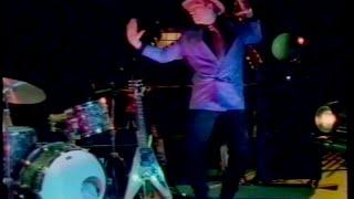 Webb Wilder - I Had Too Much To Dream (Last Night)