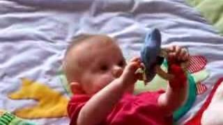 Maus spielt mit Greifling