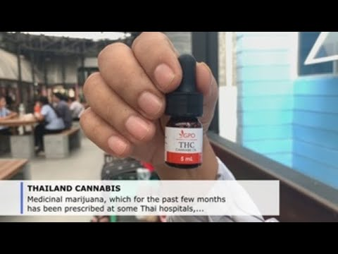 Medicinal pot in Thailand: some reject, others embrace it with too much faith