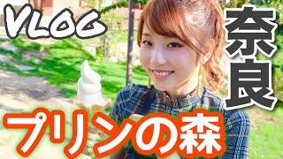 Vlog奈良のインスタ映え「プリンの森」へ行ってきました!