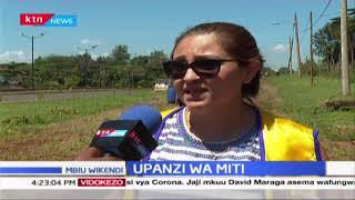 Klabu cha Lions chajumuika na jamii katika upanzi wa miti Nairobi