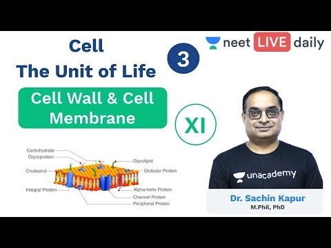 , title : 'Cell - The Unit of Life | L 3 | Cell Wall | Cell Membrane | Class 11 | Unacademy NEET | Sachin Sir