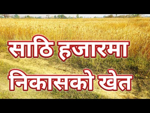 land sale in rupandehi only 60'000  !  land sale at near butwal  !!