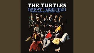Happy Together (Mono)