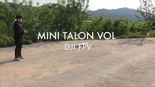 DJI FPV MINI TALON VTOL