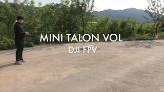 DJI FPV MINI TALON VTOL фото