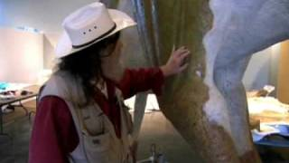 Leonardo, the mummified dinosaur