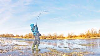 Ловля по первому льду щуки
