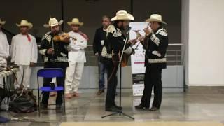 Trio - Cantores del Alba (Música folklorica)