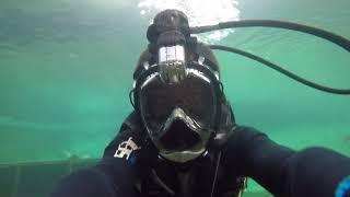 Маска полно лицевая 2 поколения для плавания + переходник для дайвинга от компании Магазин Calipso dive shop - видео