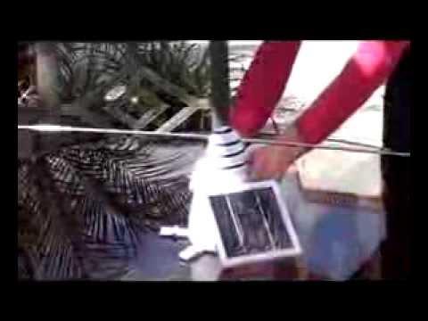 The Solar Bird Repellor