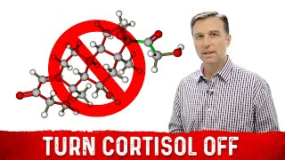 Why It's Hard to Turn Stress (Cortisol) Off