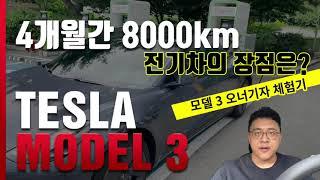 [데일리카] 4개월간 8000km 전기차의 장단점은?.. 테슬라 모델 3 오너기자 체험기