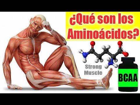 ¿Qué son los Aminoácidos? BCAA