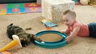 Смешное видео про котов#1✿Забавные дети и кошки.