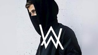 Alan Walker- Sky (New song)