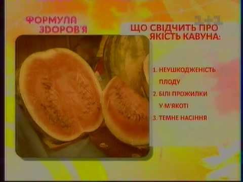 Доктор Скачко. Арбузная диета: как правильно употреблять арбузы. Школа здорового питания: 383-19-20