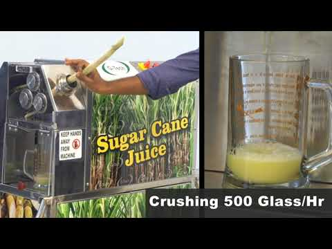 Sugarcane Juice Crusher Machine BIN -1000