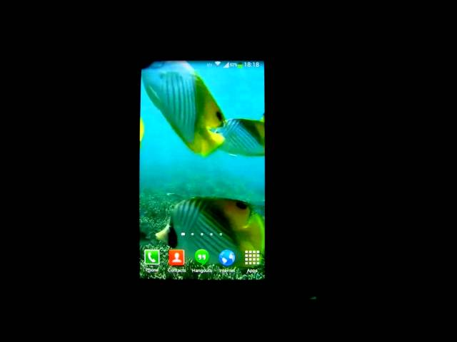 Tropical Fish Underwater Live Wallpaper HD