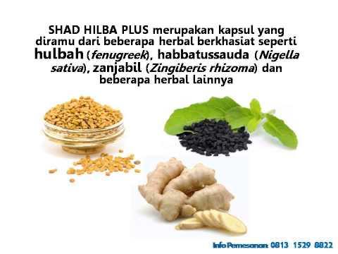Video 0813 1529 8822 (T-Sel) Obat Herbal Hulbah, Obat Herbal Wasir, Obat Herbal Maag